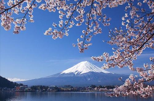 斑马ERP实现日本雅虎(Yahoo Japan)对接,店铺授权三步搞定